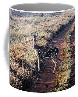 Deer Posing Coffee Mug