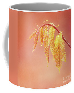 Delightful Baby Chestnut Leaves Coffee Mug