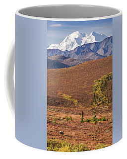 Coffee Mug featuring the photograph Denali Grizzly by Tim Newton
