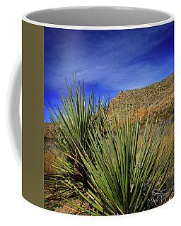 Desert Country Coffee Mug