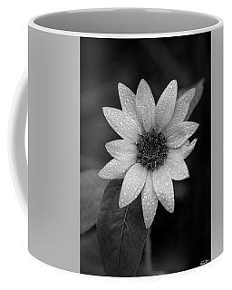Dewdrops On A Sunflower Coffee Mug