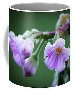Dewy Dogbane #1 Coffee Mug