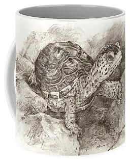 Diamondback Terrapin Coffee Mug