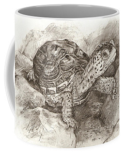 Diamondback Terrapin Coffee Mug