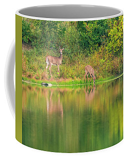 Coffee Mug featuring the photograph Doe Reflection by Dan Sproul