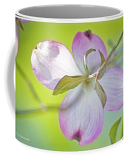 Dogwood Blossom In Spring Coffee Mug