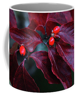 Coffee Mug featuring the photograph Dogwood Leaves In The Fall by Trina Ansel