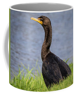 Coffee Mug featuring the photograph Double-crested Cormorant by Ricky L Jones