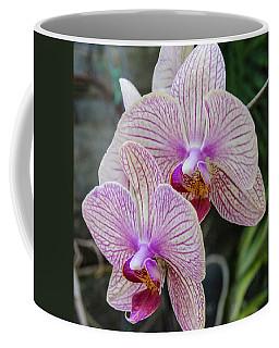 Double Delight Coffee Mug