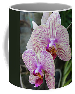 Double Delight Coffee Mug