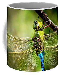 Dragonfly Closeup Coffee Mug