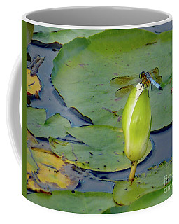 Dragonfly On Liliy Bud Coffee Mug