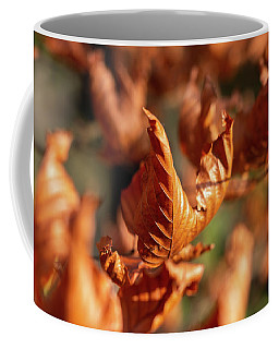 Coffee Mug featuring the photograph Dried Autumn Leaves by Scott Lyons