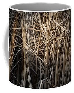 Dried Wild Grass II Coffee Mug