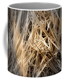 Dried Wild Grass I Coffee Mug