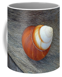 Driftwood And Periwinkle Coffee Mug