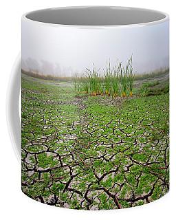 Dry Duck Pond Coffee Mug