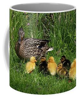 Duck And Cute Little Ducklings Coffee Mug
