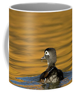 Duck Series - On Golden Pond - Wood Duck Coffee Mug