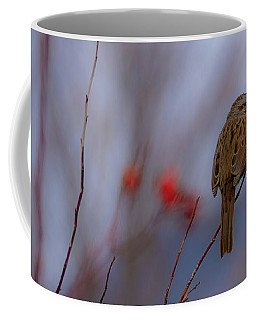 Early Spring Sparrow Coffee Mug