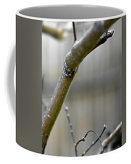 Coffee Mug featuring the photograph Early Winter Branch by Jerry Sodorff