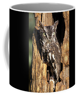 Coffee Mug featuring the photograph Eastern Screech Owl 92515 by Rick Veldman