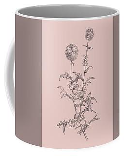 Echinopos Blush Pink Flower Coffee Mug