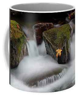 Edge Of The Torrent Coffee Mug