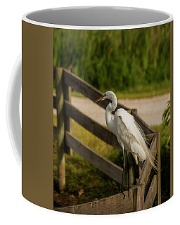 On The Fence Coffee Mug