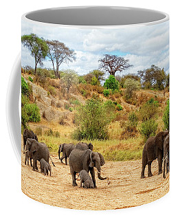 Coffee Mug featuring the photograph Elephants Drill For Water by Kay Brewer