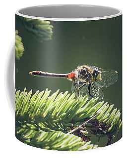 Coffee Mug featuring the photograph Elfin Whiteface Skimmer by Sally Sperry