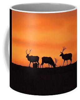 Elk In The Morning Light Coffee Mug