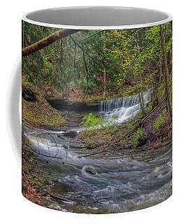 Emery Park Coffee Mug
