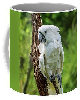 Endangered White Cockatoo Coffee Mug