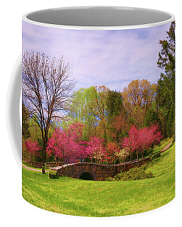 Coffee Mug featuring the photograph Entrance To Rassawek Vineyard In Columbia Virginia by Ola Allen