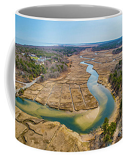 Coffee Mug featuring the photograph Essence Of Life  by Michael Hughes