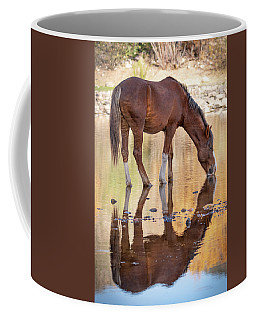 Evening Reflections Coffee Mug