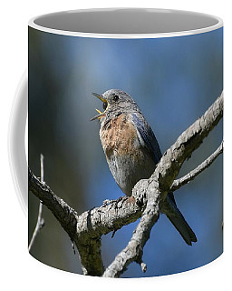 Expulsion Coffee Mug