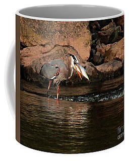 Coffee Mug featuring the photograph Eye To Eye by Debbie Stahre