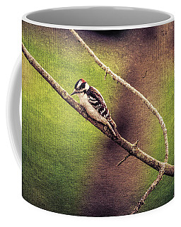 Faded Canvas Woodpecker Coffee Mug