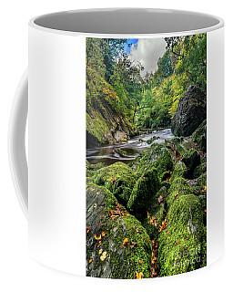 Fairy Glen Snowdonia Coffee Mug