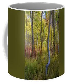 Fall Color Abstracts Coffee Mug