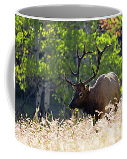 Coffee Mug featuring the photograph Fall Color Rocky Mountain Bull Elk by Nathan Bush