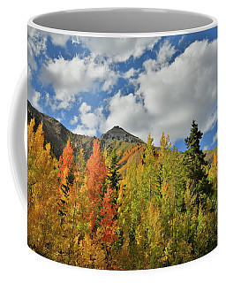 Fall Colored Aspens Bask In Sun At Red Mountain Pass Coffee Mug