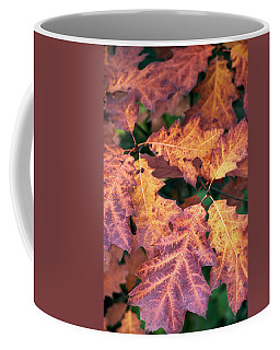 Coffee Mug featuring the photograph Fall Flames by Whitney Goodey