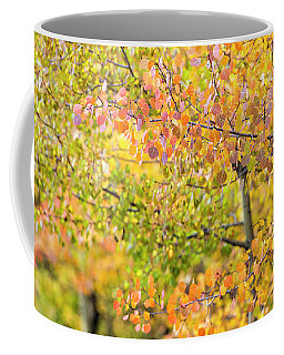 Fall Focus Coffee Mug
