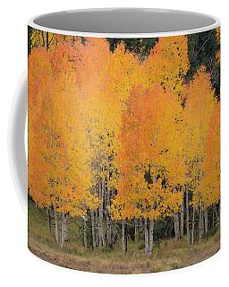 Fall Has Arrived Coffee Mug