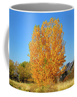 Coffee Mug featuring the photograph Fall In Idaho by Dart and Suze Humeston