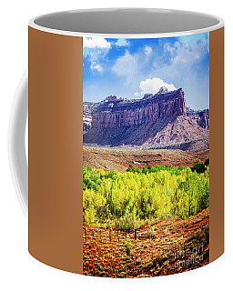 Coffee Mug featuring the photograph Fall In The Canyon by Scott Kemper