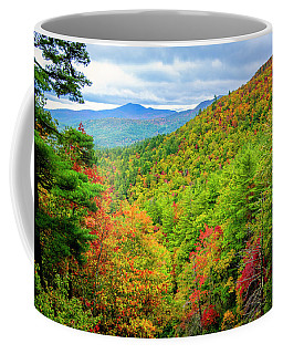 Coffee Mug featuring the photograph Fall In The Smokies by Andy Crawford